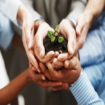 Favorable Charitable Giving Tax Extenders Made Permanent